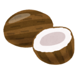 ココナッツチップスの食べ過ぎはカロリー過多にならないの?栄養や効能とは?
