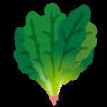 カラードグリーンの栄養や食べ方は?食べ過ぎても大丈夫?
