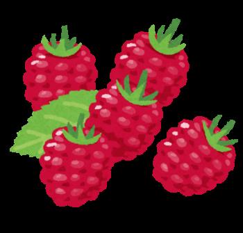 栄養 ラズベリー